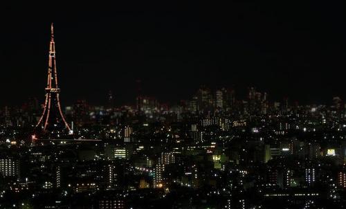 東京タワーの画像 p1_5